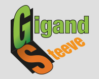 Gigand steeve